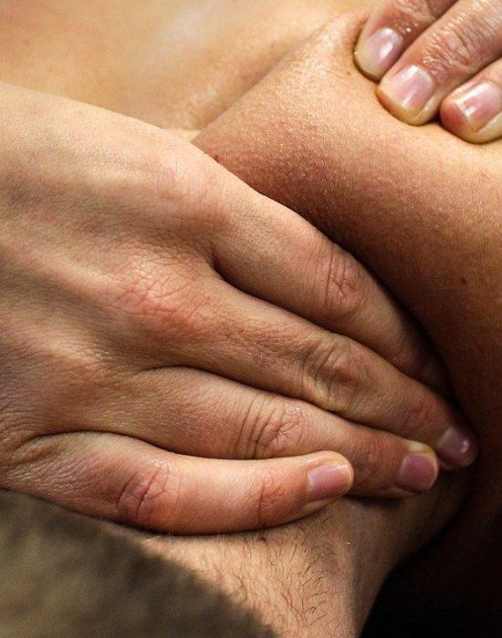hands for healthy principals